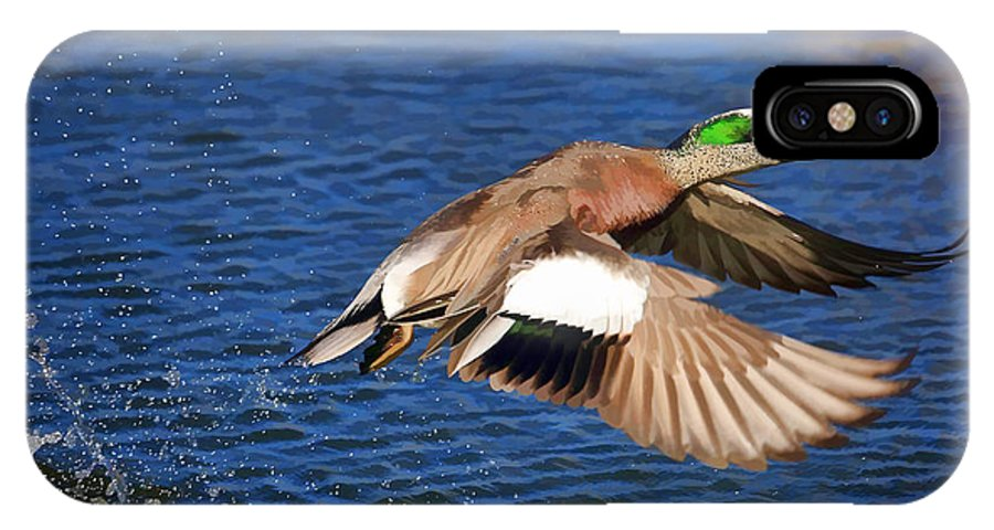 American Wigeon IPhone X Case featuring the photograph American Wigeon by Donna Kennedy