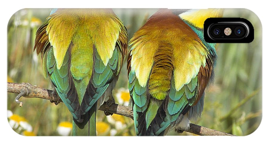 Birds IPhone X Case featuring the photograph Bee-eaters by Guido Montanes Castillo