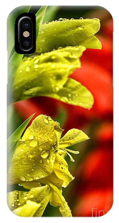 Rain IPhone X Case featuring the photograph Blossom With Raindrops by Thomas R Fletcher