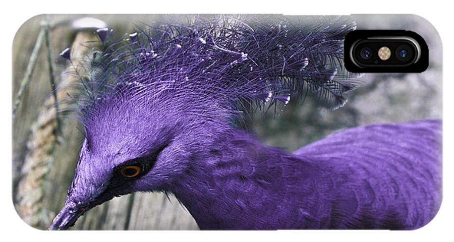 Bird IPhone X Case featuring the photograph Blue Crown by Joel De la torre