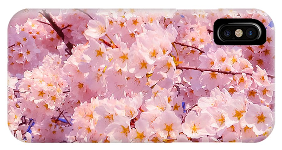 2012 Centennial Celebration IPhone X Case featuring the photograph Bursting With Blossoms by Jeff at JSJ Photography