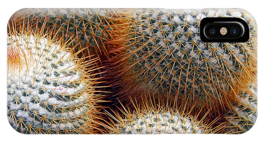 Cactus IPhone X Case featuring the photograph Cactus by Jim McCullaugh