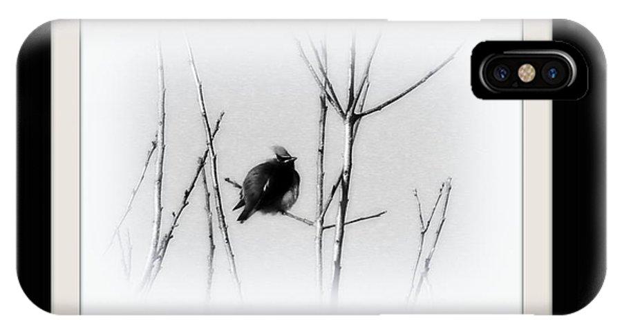 Cedar Waxwing IPhone X Case featuring the photograph Cedar Waxwing by Travis Truelove