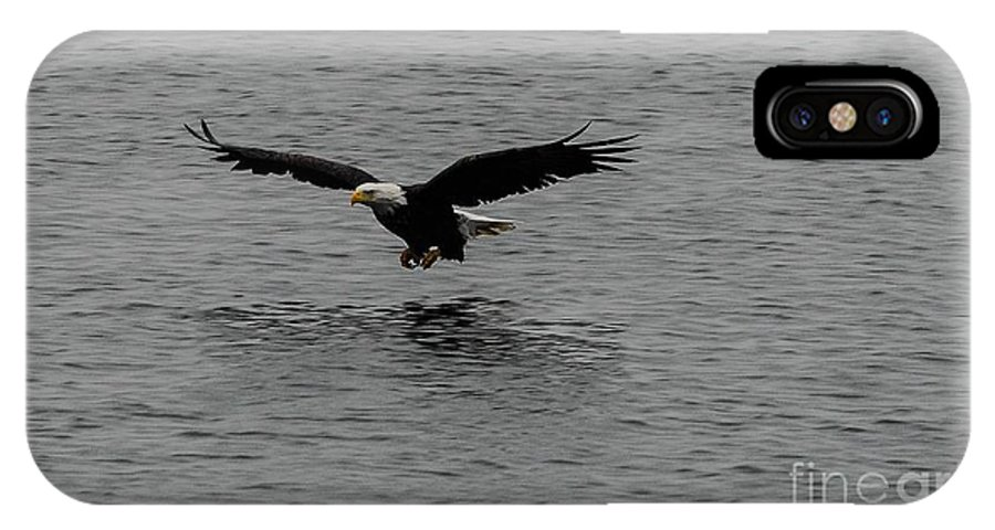 Bald Eagle IPhone X Case featuring the photograph Coming In by Robert Smice