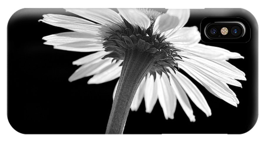 Echinacea IPhone X Case featuring the photograph Coneflower by Tony Cordoza