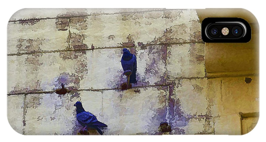 Fort IPhone X Case featuring the photograph Couple Of Pigeons On A Wall by Ashish Agarwal