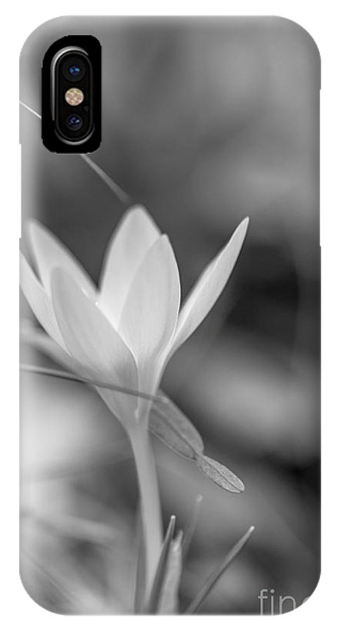 Black & White IPhone X Case featuring the photograph Crocus by Jivko Nakev
