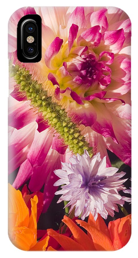Dahlia IPhone X Case featuring the photograph Dahlia Zinnia Bachelor's Buttons Flowers by Keith Webber Jr