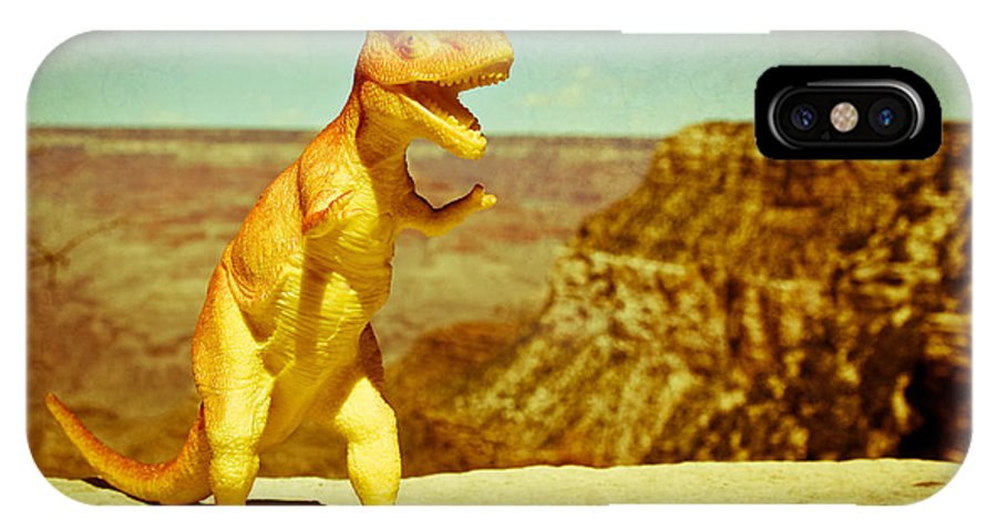 Grunge IPhone X Case featuring the photograph Dinosaure by Isabel Poulin