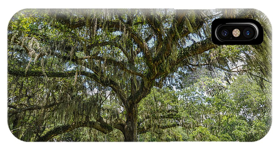 East Cooper Hospital Grounds IPhone X Case featuring the photograph Dripping With Spanish Moss by Dale Powell