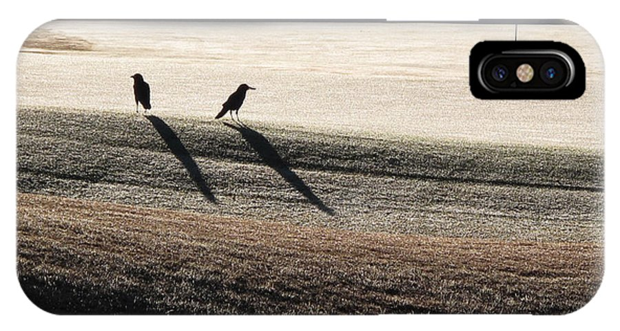 Crows IPhone X Case featuring the photograph Eighteenth Hole by Monika A Leon