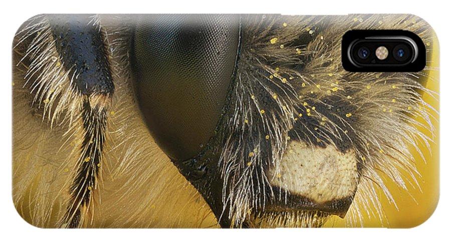 Image Digitally Manipullated IPhone X Case featuring the photograph Eucera Longicornis Portrait 4.5x by Javier Torrent - Vwpics