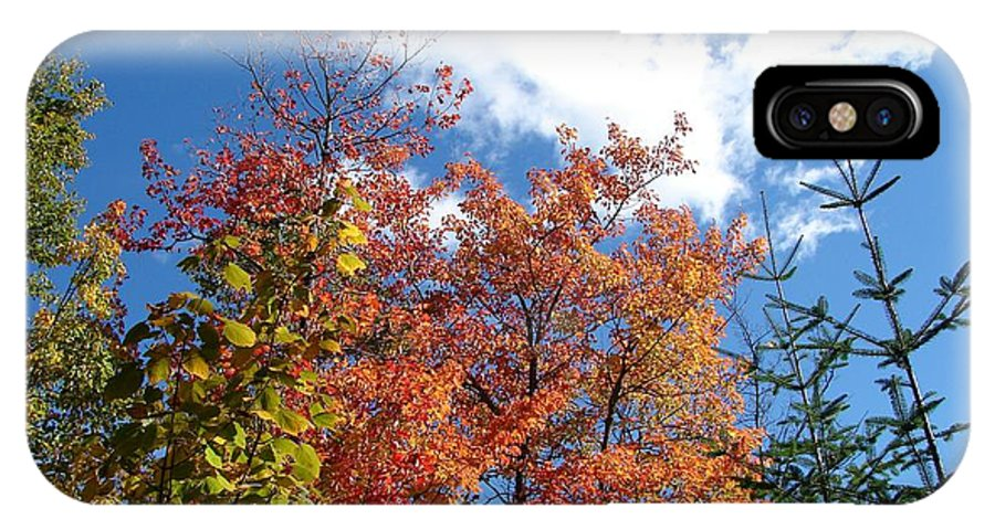 Fall IPhone X Case featuring the photograph Fall Colors And Blue Sky by Sylvie Bouchard