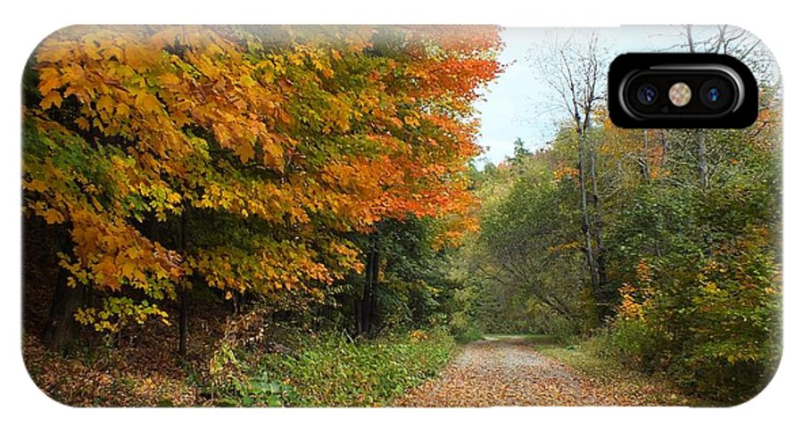 New England IPhone X Case featuring the photograph Falling Leaves by Gene Cyr