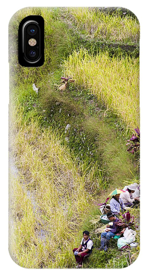 Rice IPhone X Case featuring the photograph Farmers In Rice Field by Tuimages