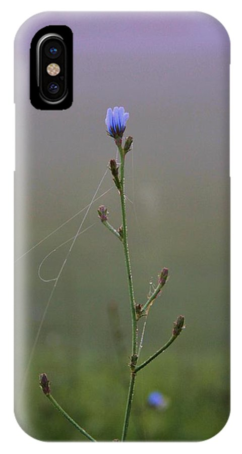 Ohio IPhone X Case featuring the photograph Spring Morning by Dan Sproul
