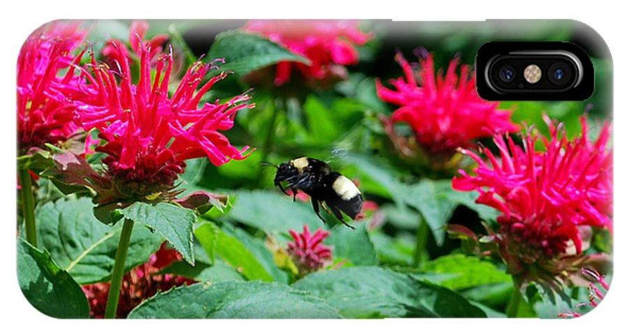Bee IPhone X Case featuring the photograph Flying Bee With Bee Balm Flowers by Nancy Mueller