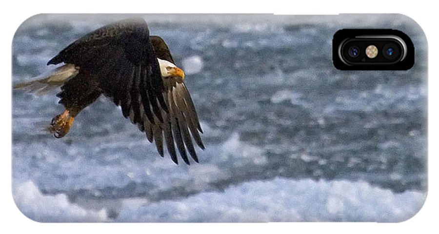 Haliaeetus Leucocephalus IPhone X Case featuring the photograph Flying Over Ice by J L Woody Wooden