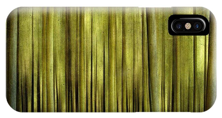 Abstract IPhone X Case featuring the photograph Forest by Bernard Jaubert