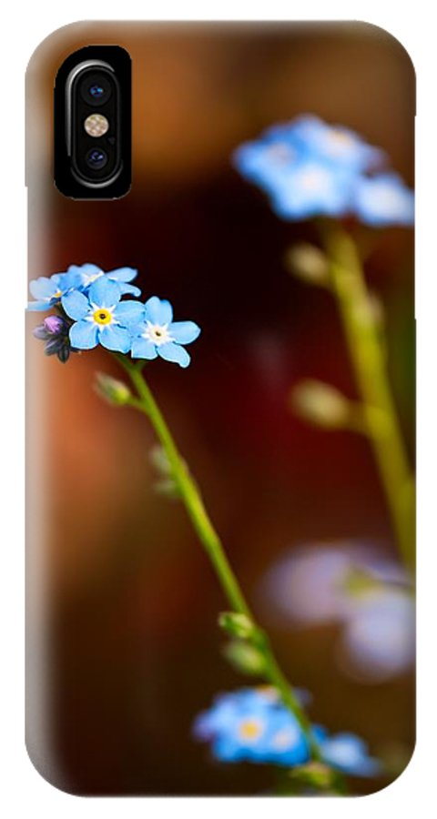 Forget-me-not IPhone X Case featuring the photograph Forget Me Not by Onyonet Photo Studios