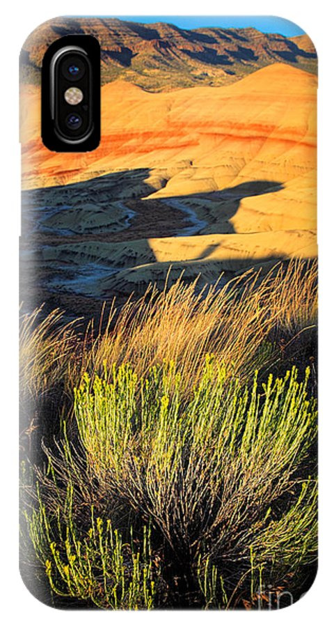 America IPhone X Case featuring the photograph Fossil Beds And Grass by Inge Johnsson