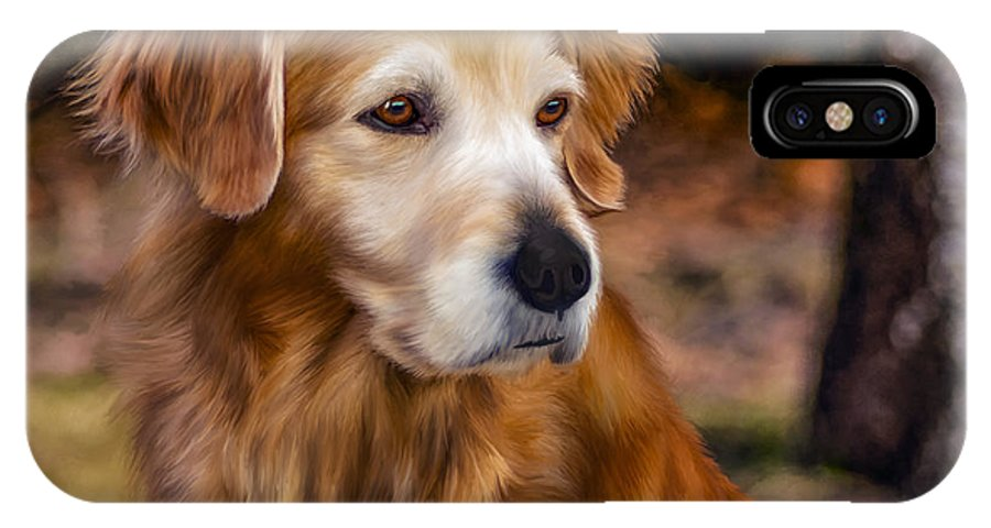 Animal IPhone X Case featuring the photograph Golden Retriever by Laird Roberts