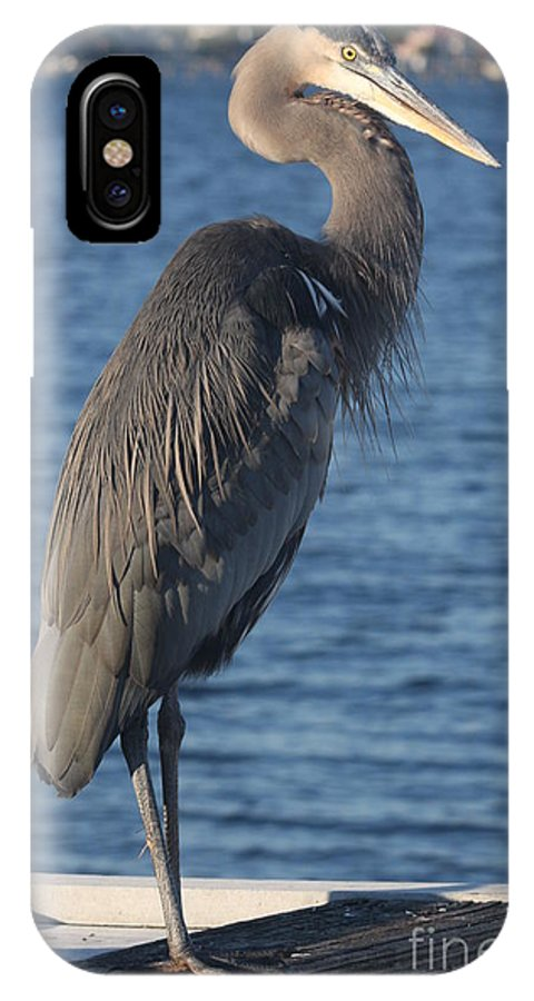 Heron IPhone X Case featuring the photograph Great Blue Heron by Christiane Schulze Art And Photography