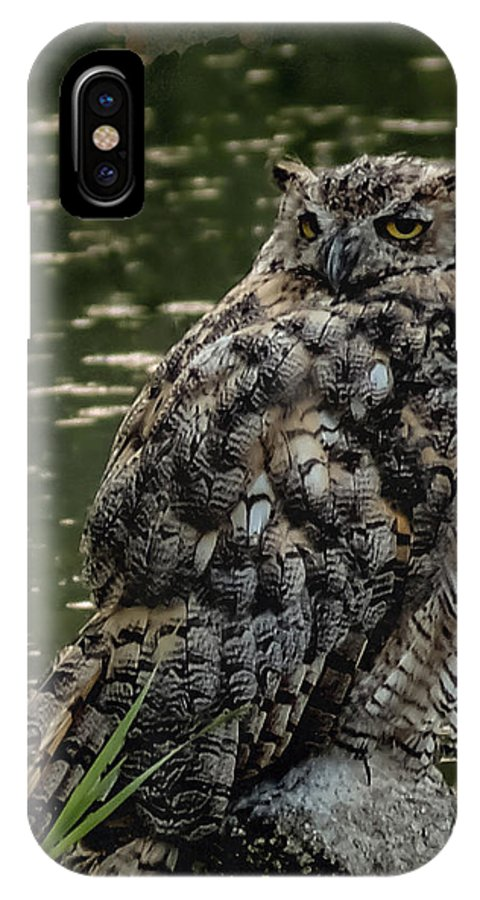 Birds IPhone X Case featuring the photograph Great Horned Owl by Ernie Echols
