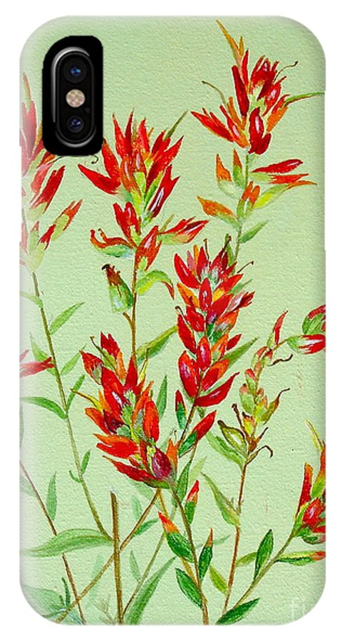 Indian Paintbrush IPhone X Case featuring the painting Indian Paintbrush by Virginia Ann Hemingson
