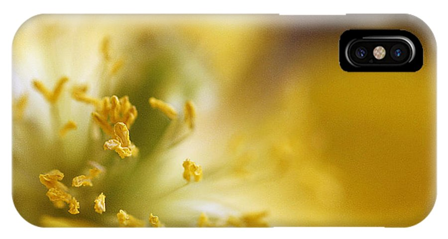 Painterly IPhone X Case featuring the photograph Inside The Poppy by Darren Fisher