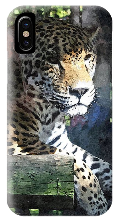Animal IPhone X Case featuring the mixed media Jaguar by Barry Spears