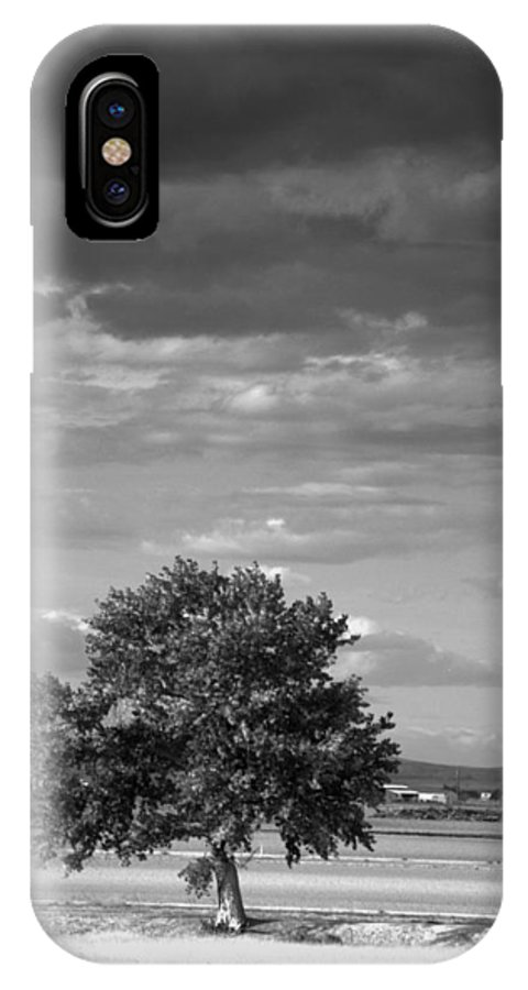 Tree IPhone X Case featuring the photograph Lone Tree Wilder Idaho by Nathan Abbott