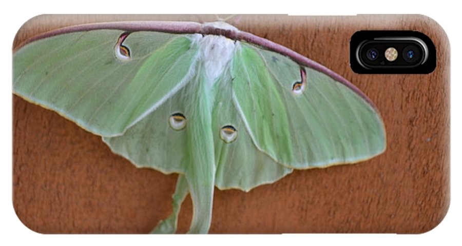 Vermont IPhone X / XS Case featuring the photograph Luna Moth by Susan Russo
