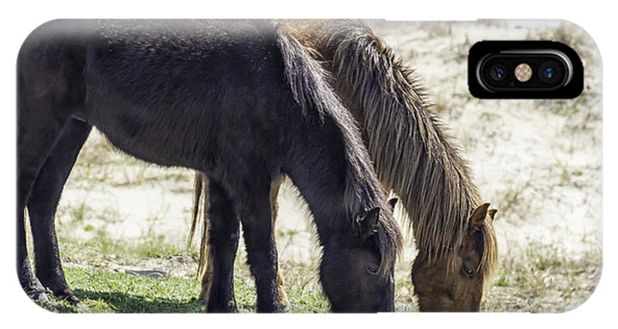 Horses IPhone X Case featuring the photograph Lunch With A Friend 1220 by Karen Celella