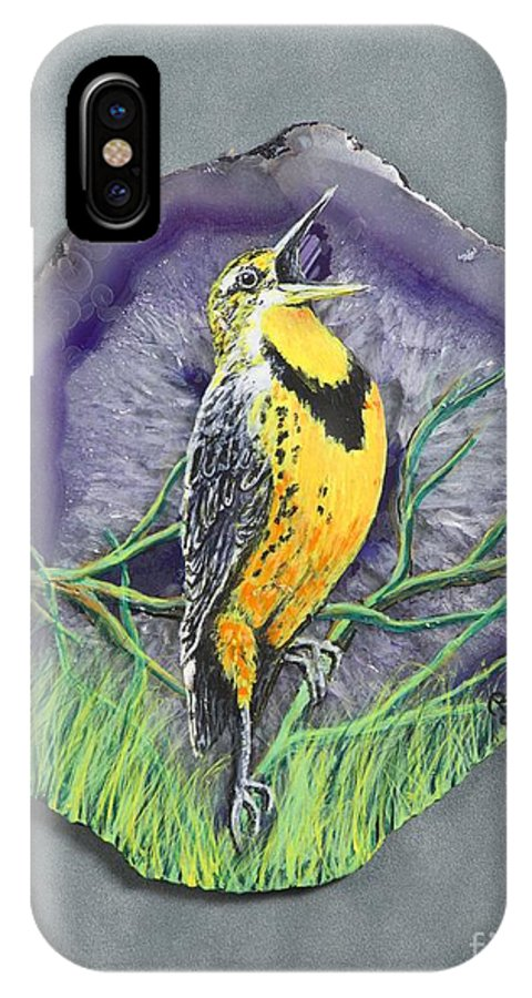 Birds IPhone X Case featuring the painting Meadow Soloist I by Bob Williams
