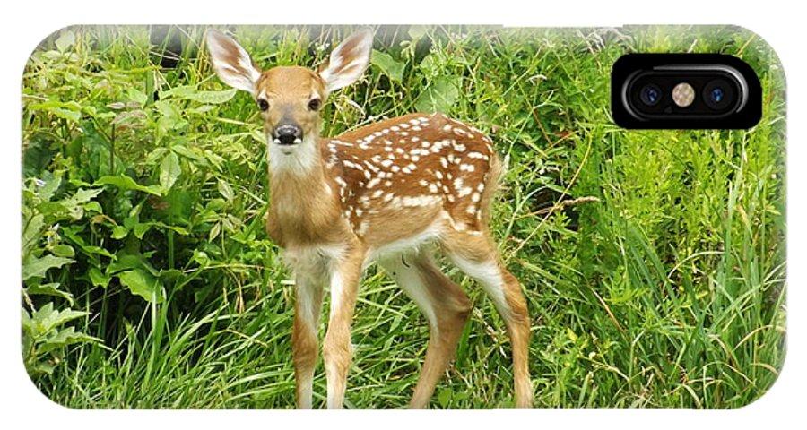 Deer IPhone X Case featuring the photograph Newborn Fawn by Walter Rickard