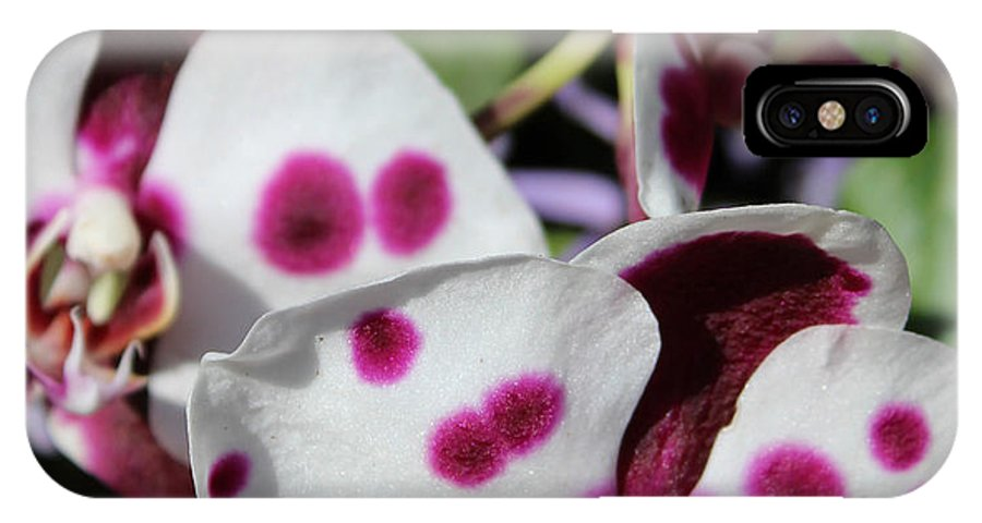 Orchid IPhone X Case featuring the photograph Orchid One by Mark Steven Burhart