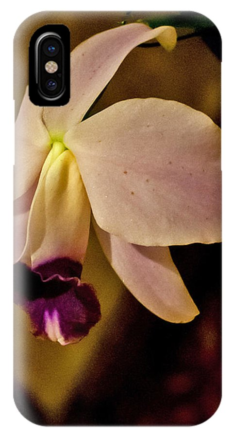 Orchids IPhone X Case featuring the photograph Orchid by Ragai Karas