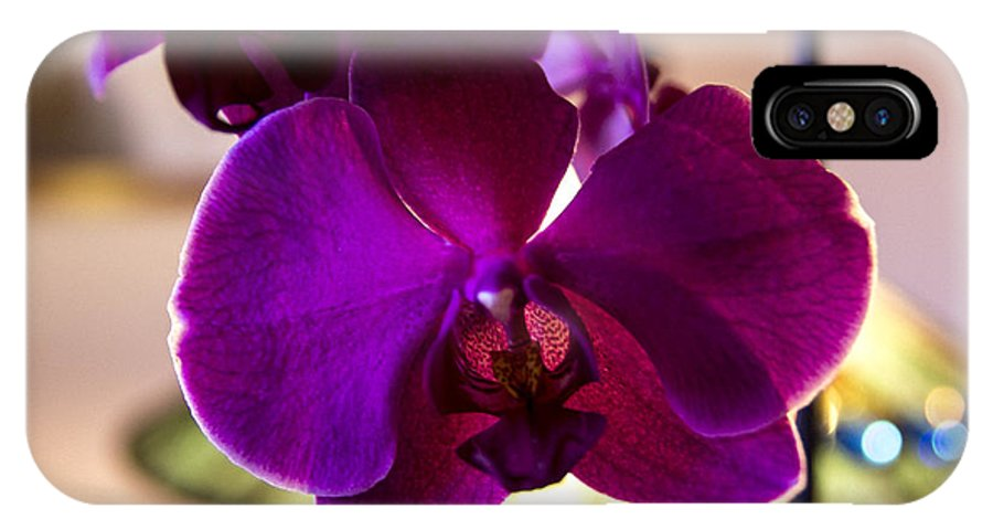 Purple Orchid IPhone X Case featuring the photograph Orchids by Sheree Lauth