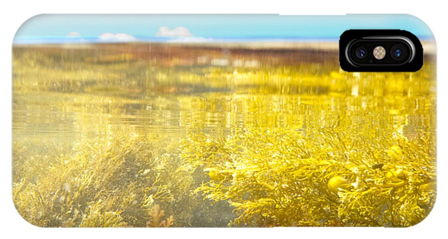 Above IPhone X Case featuring the photograph Over-under Split Shot Of Clear Water In Tidal Pool by Stephan Pietzko