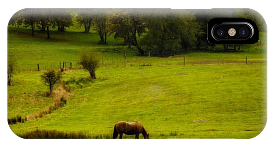 Horses IPhone X Case featuring the photograph Peace In The Valley by Terry Matysak