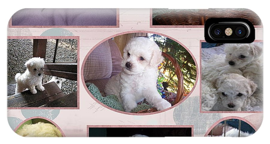 Dogs And Puppies IPhone X Case featuring the photograph Precious by Susan Ince