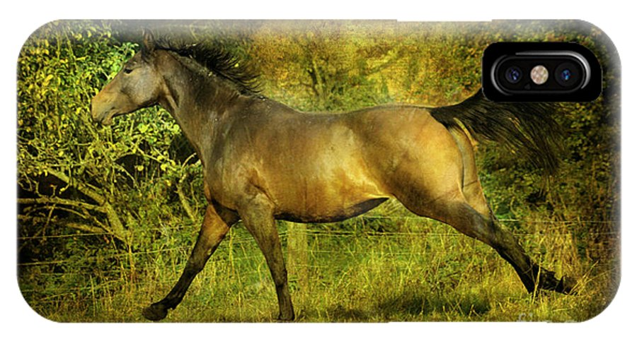 Horses IPhone X Case featuring the photograph Running Free by Angel Ciesniarska