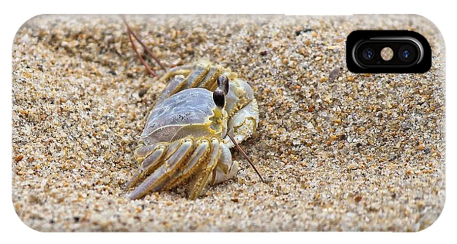 Sand IPhone X Case featuring the photograph Sand Crab by Carolyn Ricks