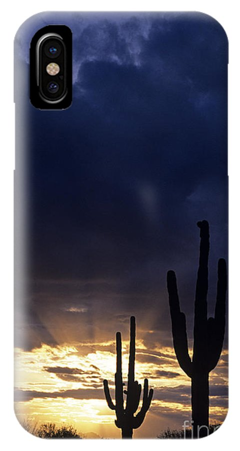 American Southwest IPhone X Case featuring the photograph Silhouetted Saguaro Cactus Sunset At Dusk Arizona State Usa by Jim Corwin