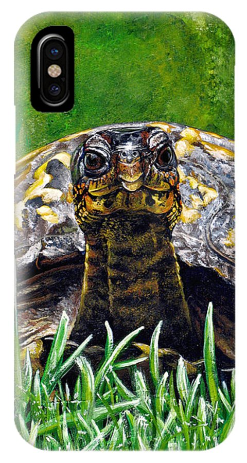 Turtle IPhone Case featuring the painting Smile by Cara Bevan