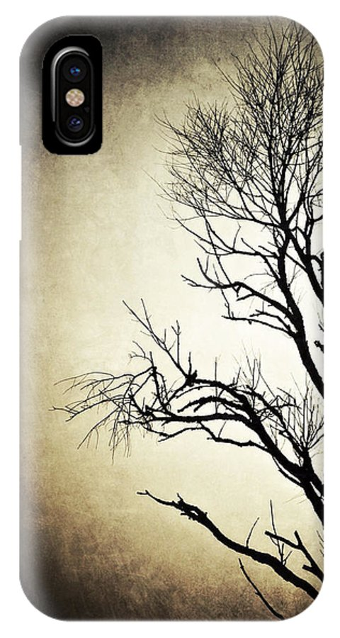 Nature IPhone X Case featuring the photograph Solitary by Natasha Marco