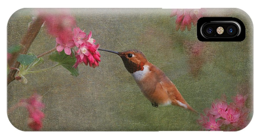 Humminbird IPhone X Case featuring the photograph Spring Delight by Angie Vogel