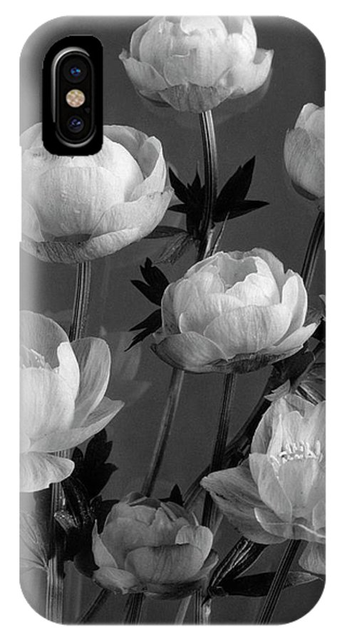 Flowers IPhone X Case featuring the photograph Still Life Of Flowers by J. Horace McFarland