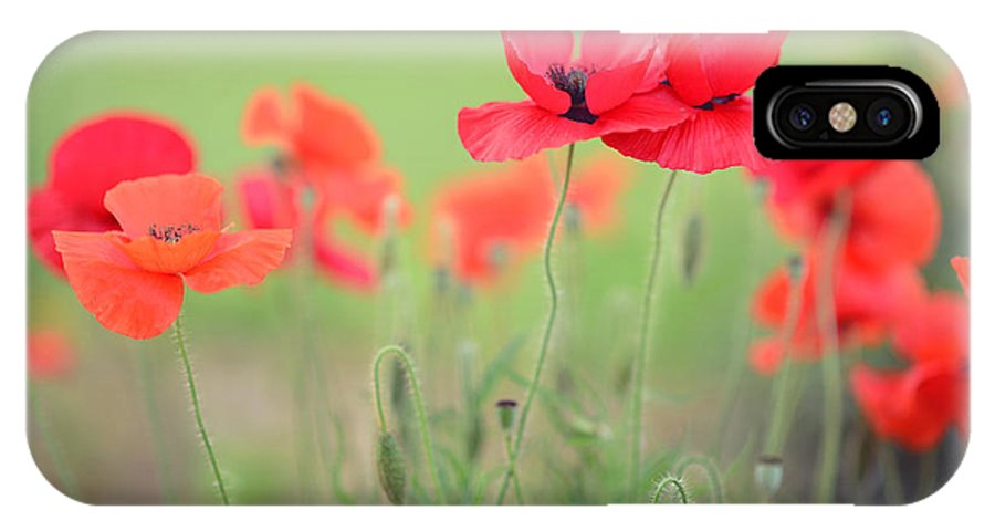 Poppy IPhone X Case featuring the photograph Summer Poppies by Angie Li